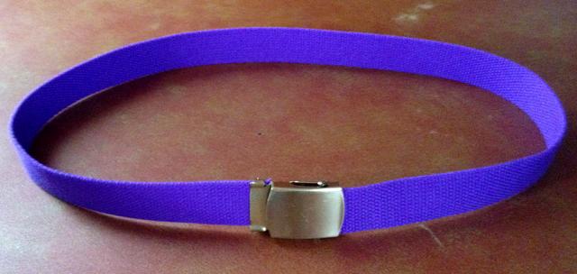 [Image: belt.png]